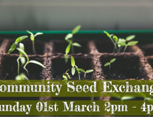 2020 Community Seed Exchange